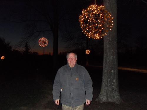 lightsintrees